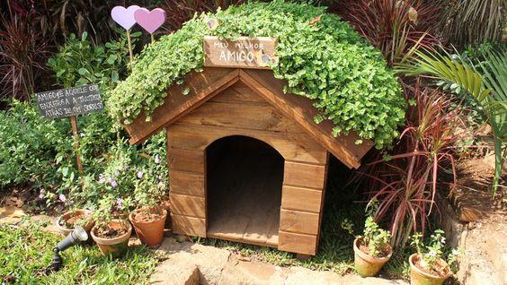 ecotelhado casa pet no quintal