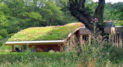 ecotelhado florido estrutura ondulada área verde