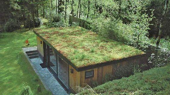 casa pequena retangular com ecotelhado em meio a natureza