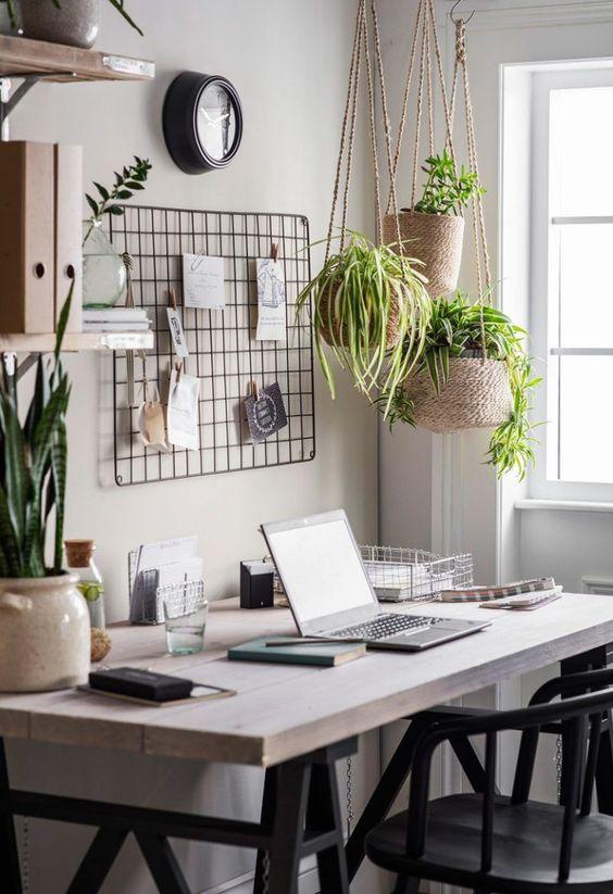 home office com plantas suspensa