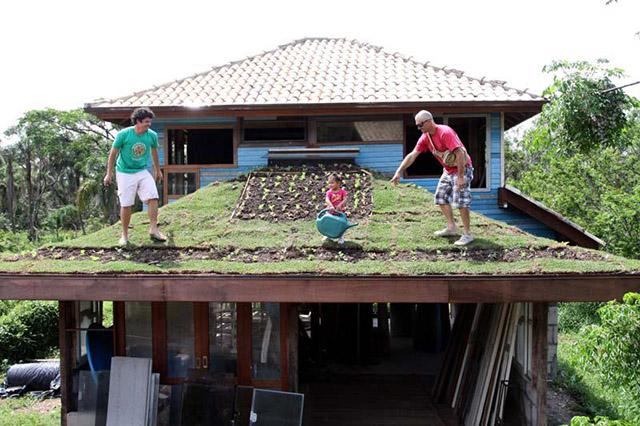 ecotelhado em casa com horta suspensa e pessoas sobre