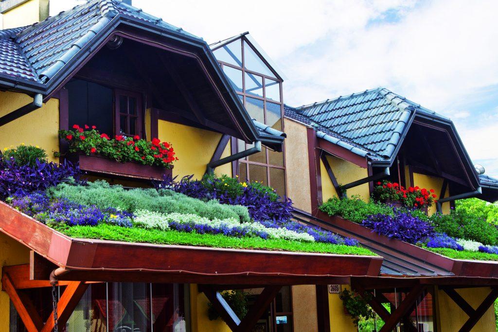 casa estilo alemã com jardim colorido em ecotelhado