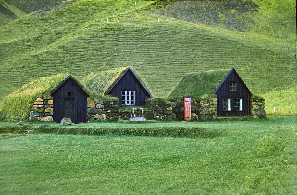 três casas de madeira camuflada na vegetação verde