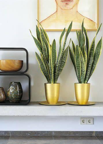 prateleira com vasos dourados