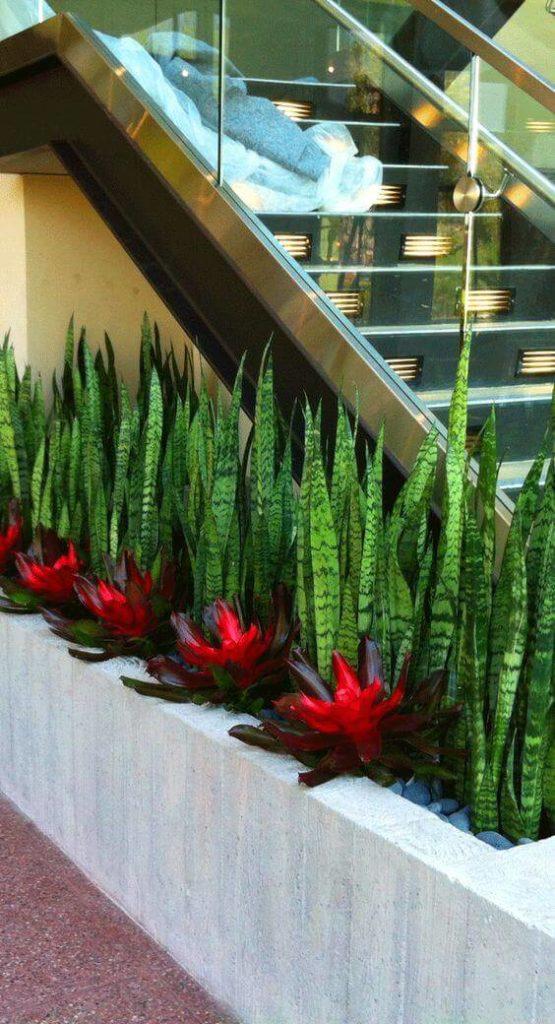 plantas jardim interno beirando a escada