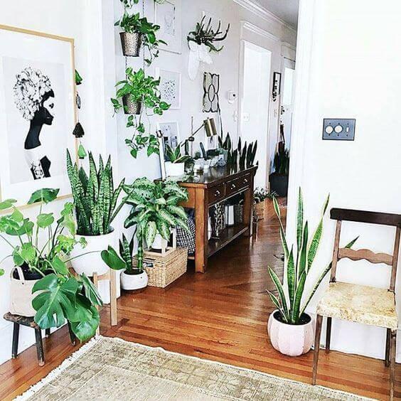 corredor com móvel espaço verde