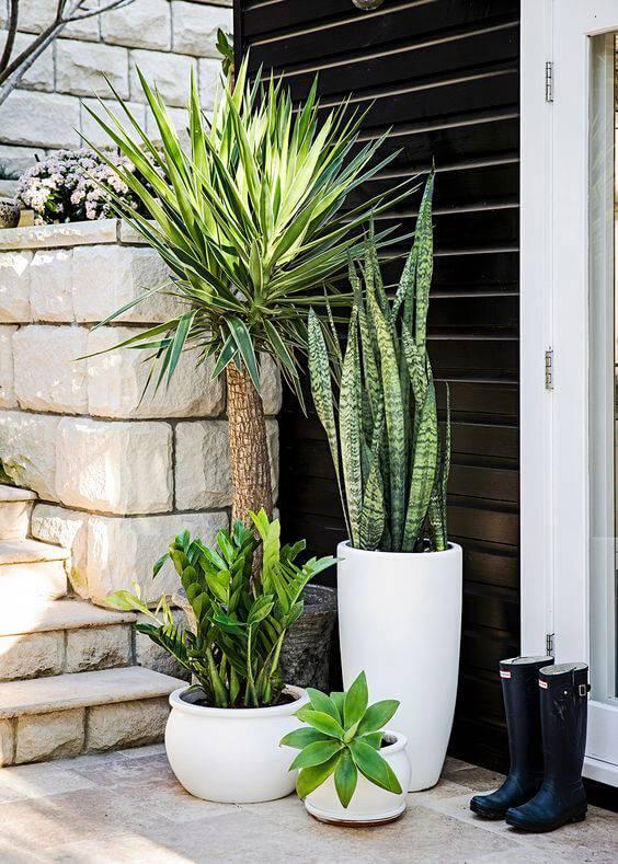 entrada externa jardim de vasos brancos