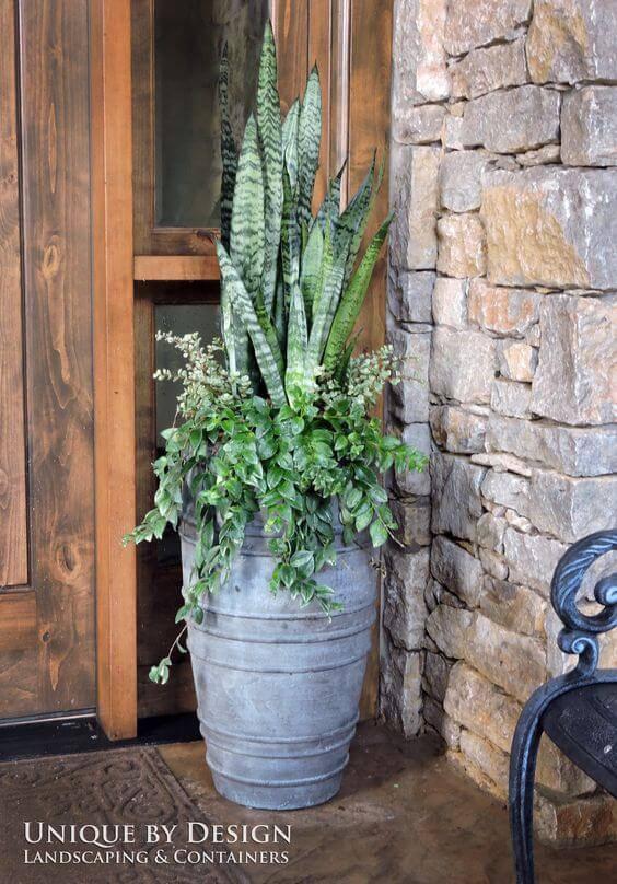 plantas hall de entrada vaso concreto