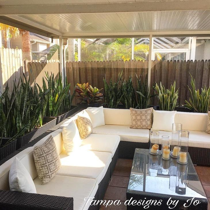 variedade de plantas jardim externo com parede de vidro