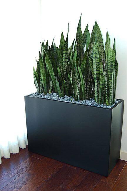 vaso preto reto com pedras e plantas