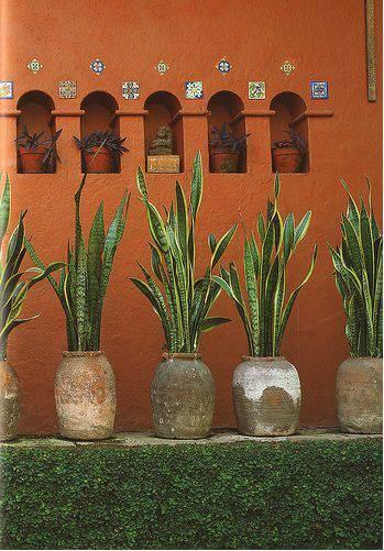 espada de santa barbara vasos antigos e fundo muro laranja