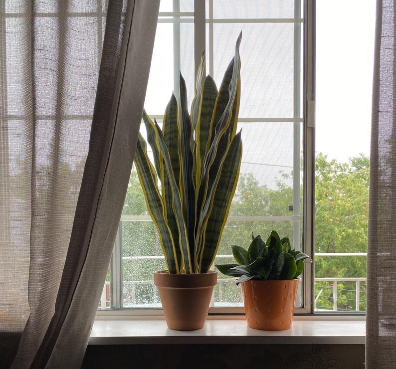 espada de santa barbara e mini espada em vaso pequeno na janela