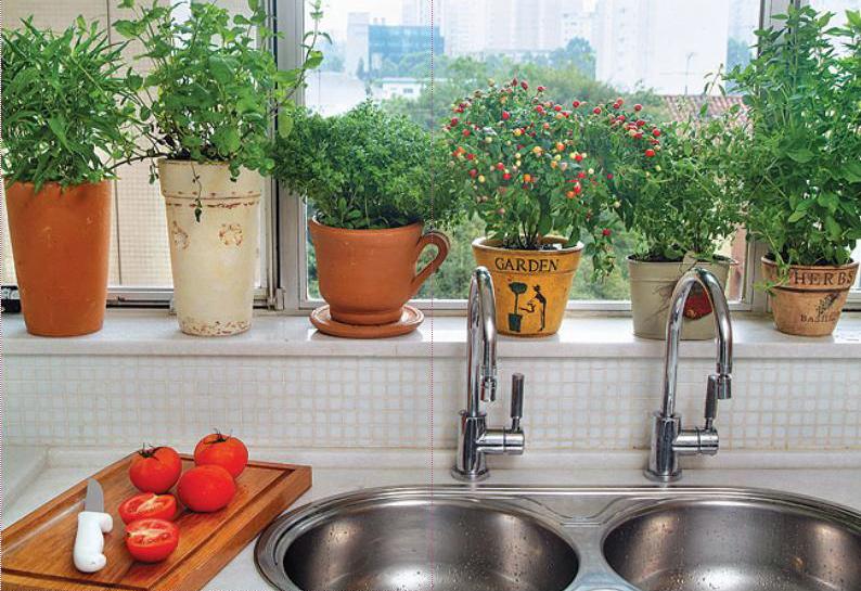 horta em casa para harmonizar a cozinha