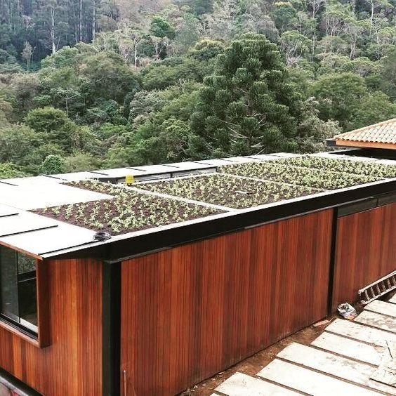 telhado verde com horta em casa meio a natureza