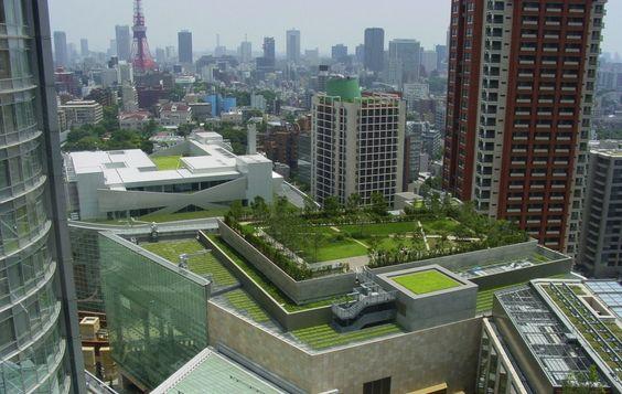 ecotelhado em edifício grande em meio a prédios