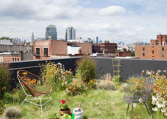 terraço espaço urbano jardim com flores diversas em solo gramado