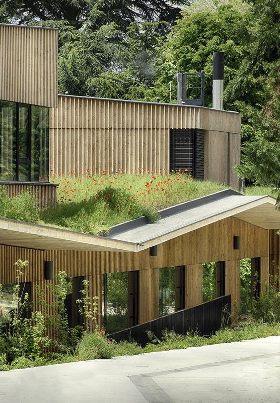 teto verde em casa com grama alta