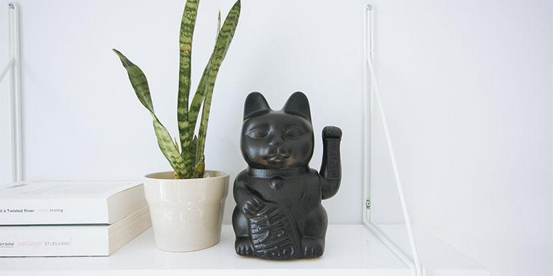 vaso espada de são jorge e gato oriental para boas energias feng shui