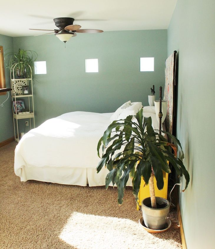 quarto paredes em tom de verde claro com plantas e iluminação natural
