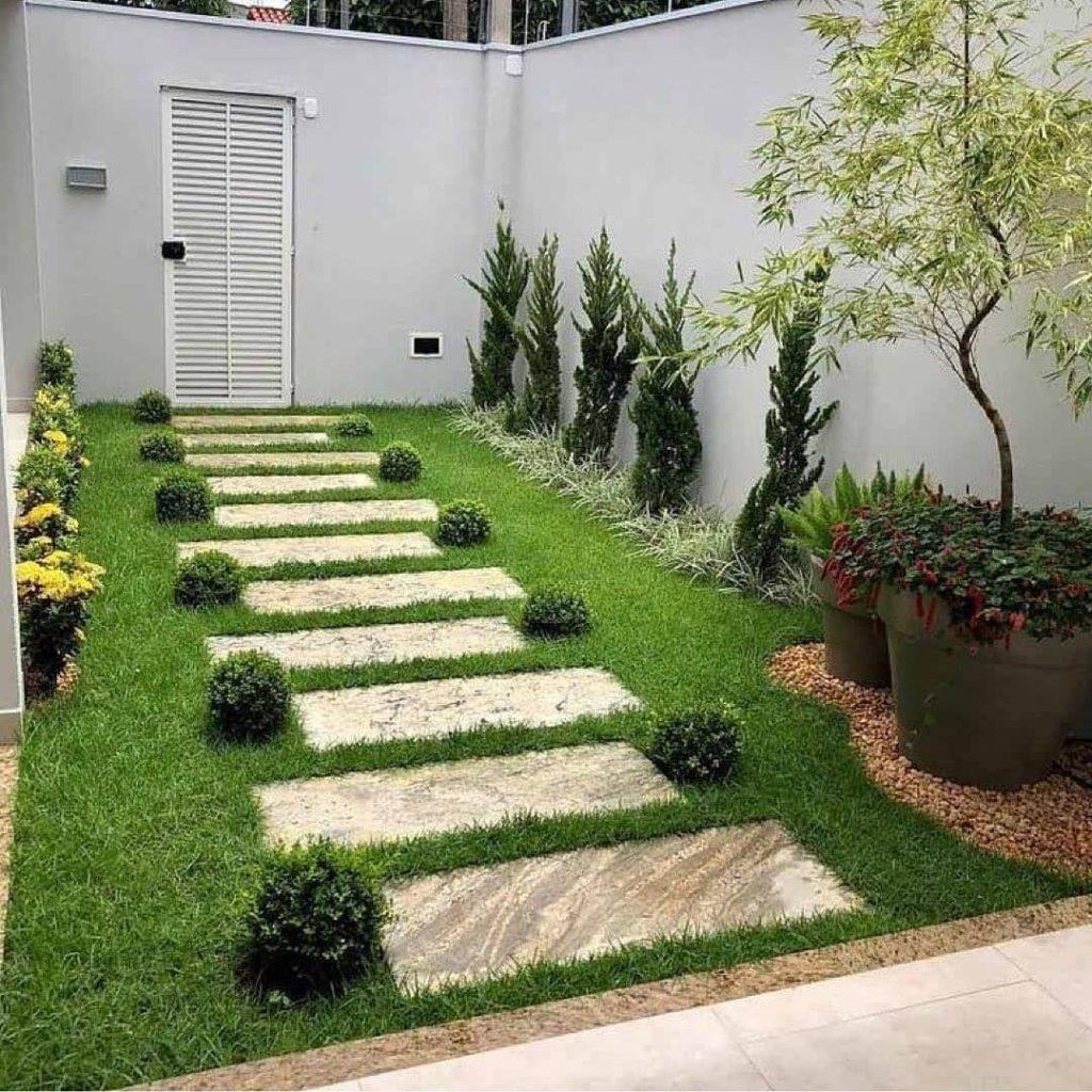 plantas para valorizar o zig zag