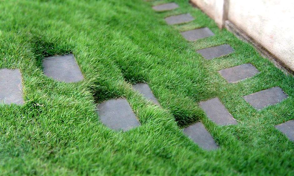 grama e pedra para degraus