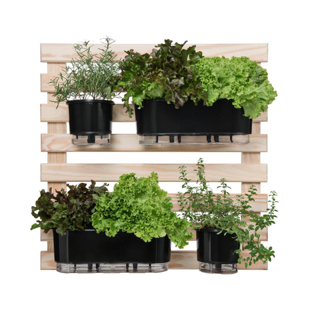 horta vertical vasso pretos