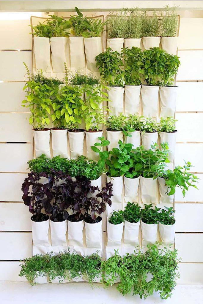 horta vertical com saquinhos