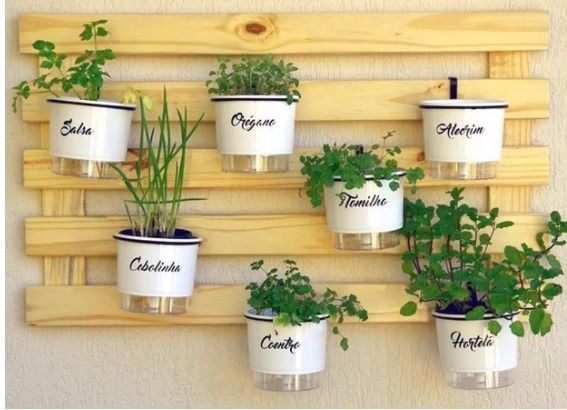 horta vertical vasos brancos