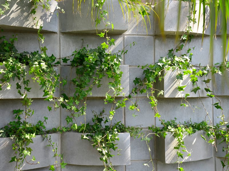 horta vertical concreto