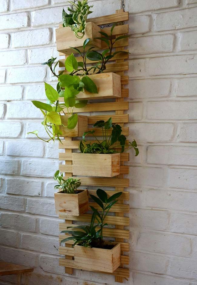 horta madeira
