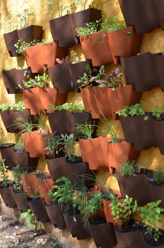 horta vertical intercalada