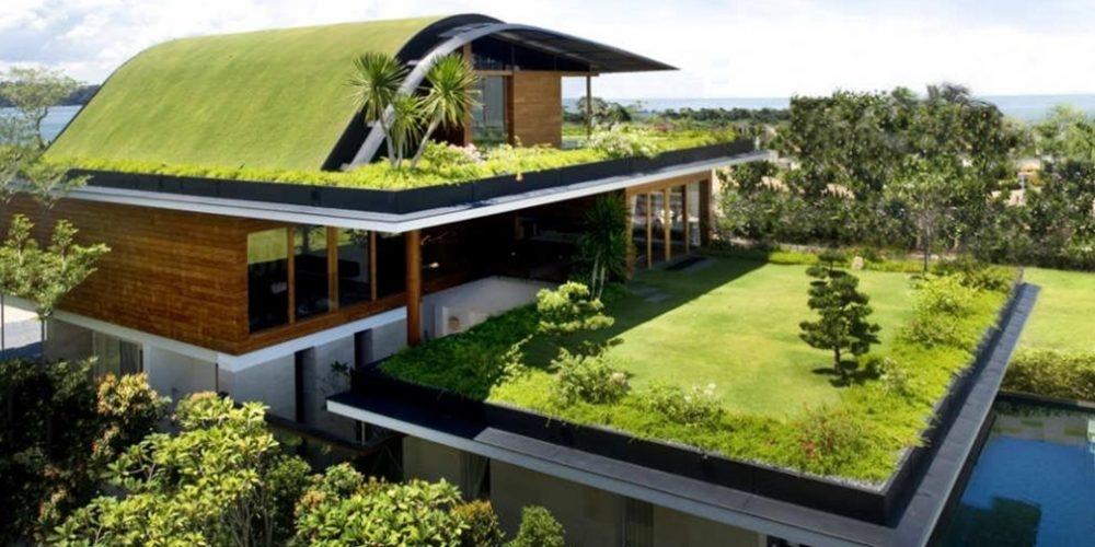 tipos de telhados verde