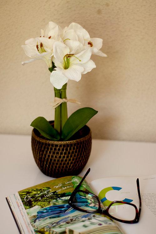 decoração de escritorio