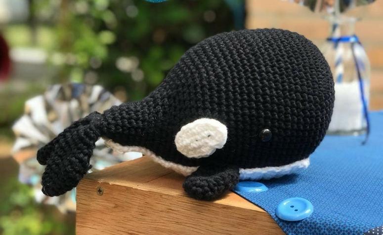 baleia orca pequena