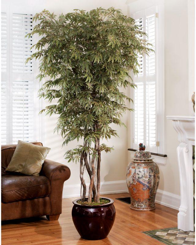 árvore como elemento decorativo
