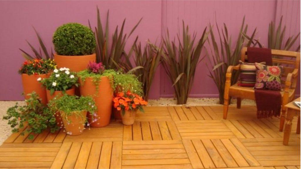 planta ornamental no deck