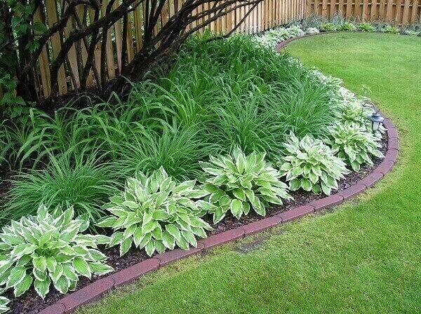 pequeno jardim ornamental