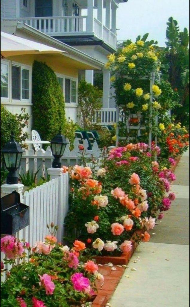 fachadas decoradas com rosas