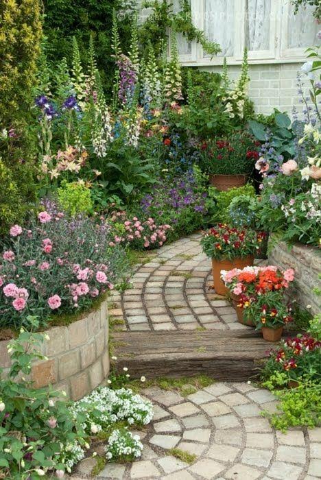 diversas plantas com rosas
