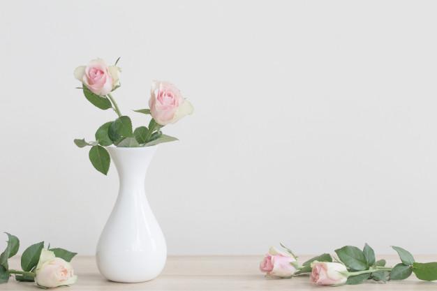 rosas e minimalismo