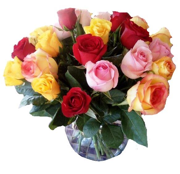 composições coloridas com rosas