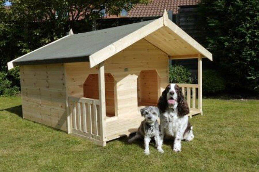 casa grande para dois cachorros