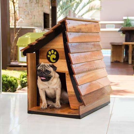 casa personalizada para cachorro
