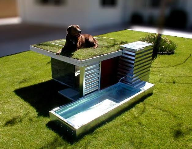 casa sustentável com irrigação