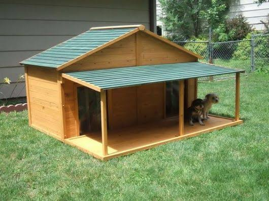 casa dividida para cachorro