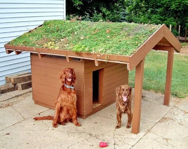 casa sustentável simples