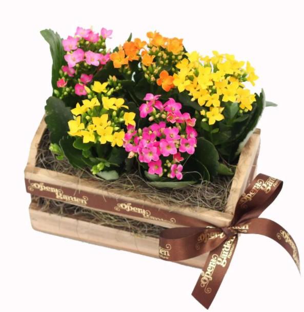 lembrancinha com flores no caixote