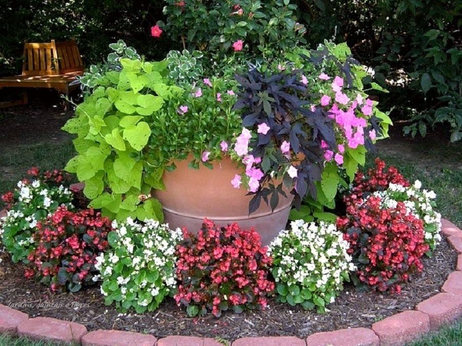 jardim colorido