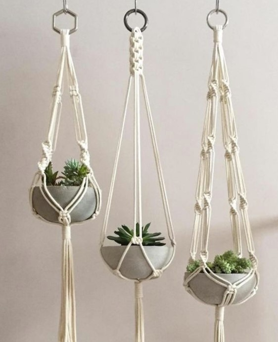 conjunto de suporte para plantas