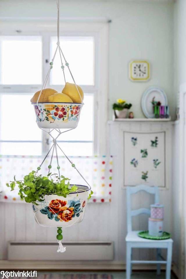 porta frutas e plantas